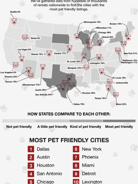 Most Pet Friendly Cities for Renters Infographic