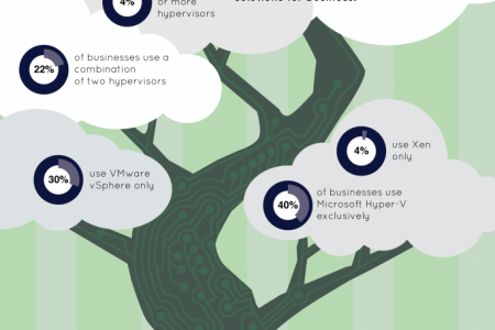 Most popular Hypervisor Solutions for businesses Infographic