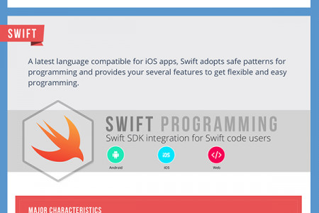 Most Popular Programming You Must Experience for Mobile App Development Infographic