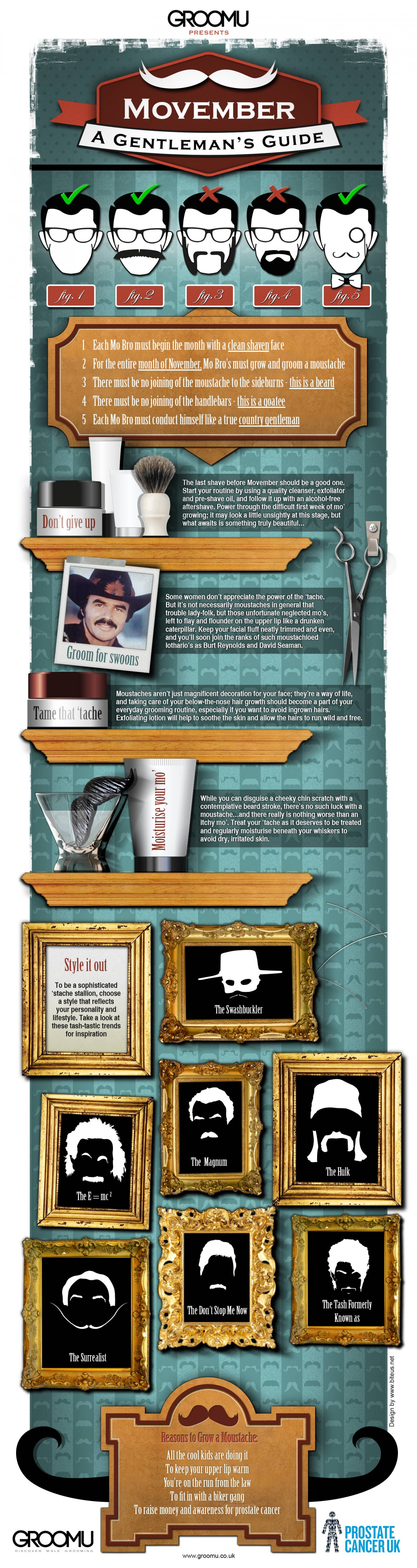 Movember: A Gentleman's Guide Infographic