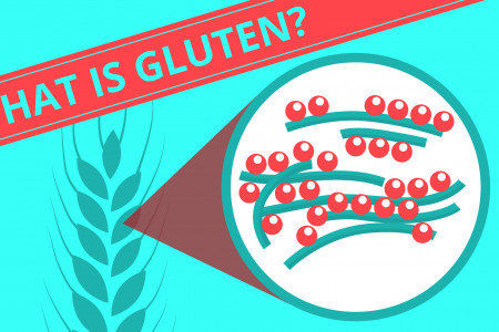 Much Ado About Gluten Infographic