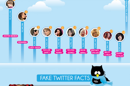 Musicians and Their Fake Twitter Followers Infographic