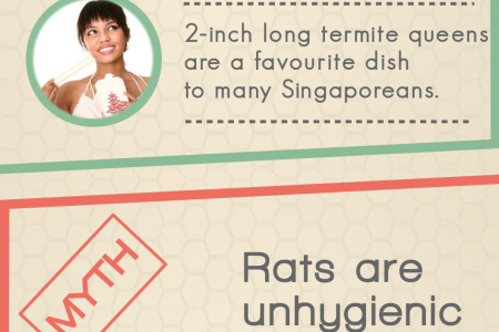 Myths and Facts about Pests Infographic