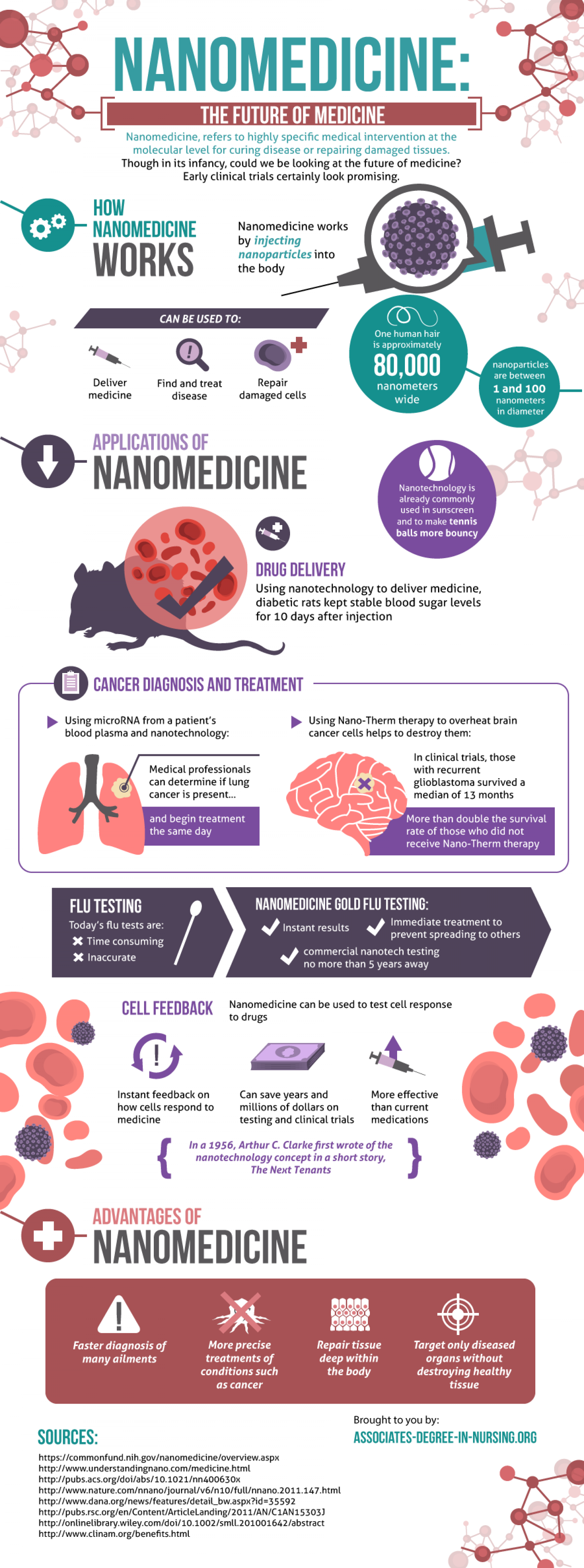 Nanomedicine: The Future of Medicine Infographic