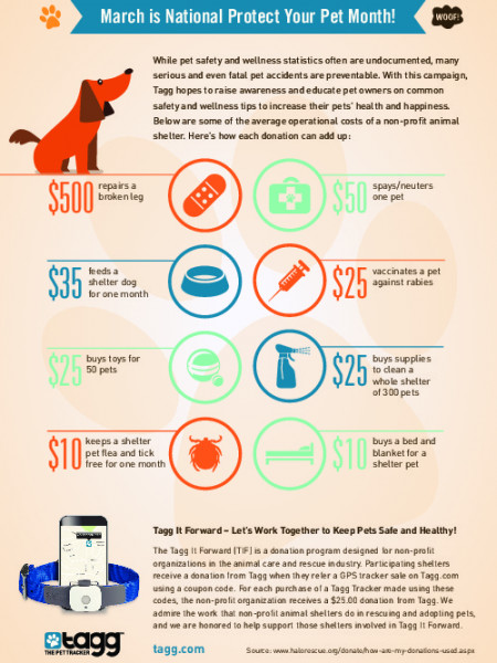 March Is National Protect Your Pet Month! Infographic