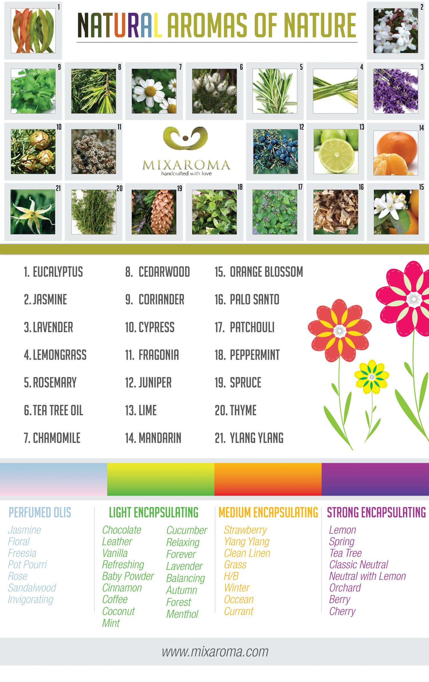 Natural Aromas of Nature Infographic