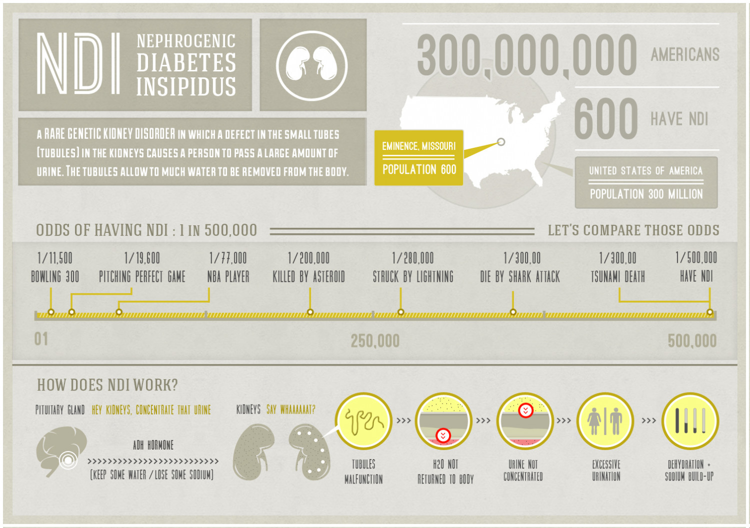 NDI (Nephrogenic Diabetes Insipidus) Infographic