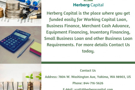 Need Small Business Loan or Working Capital Now? Infographic