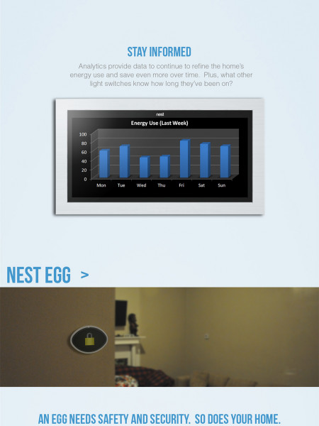 Nest Product Design  Infographic