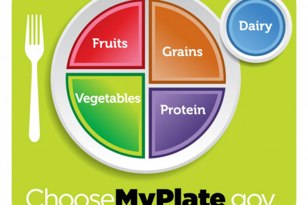 New Nutritional Infographics: Goodbye Food Pyramid Infographic