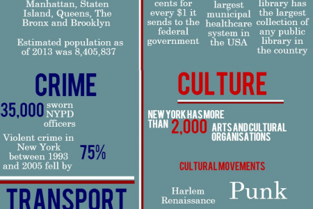 New York: An Expat's Guide  Infographic