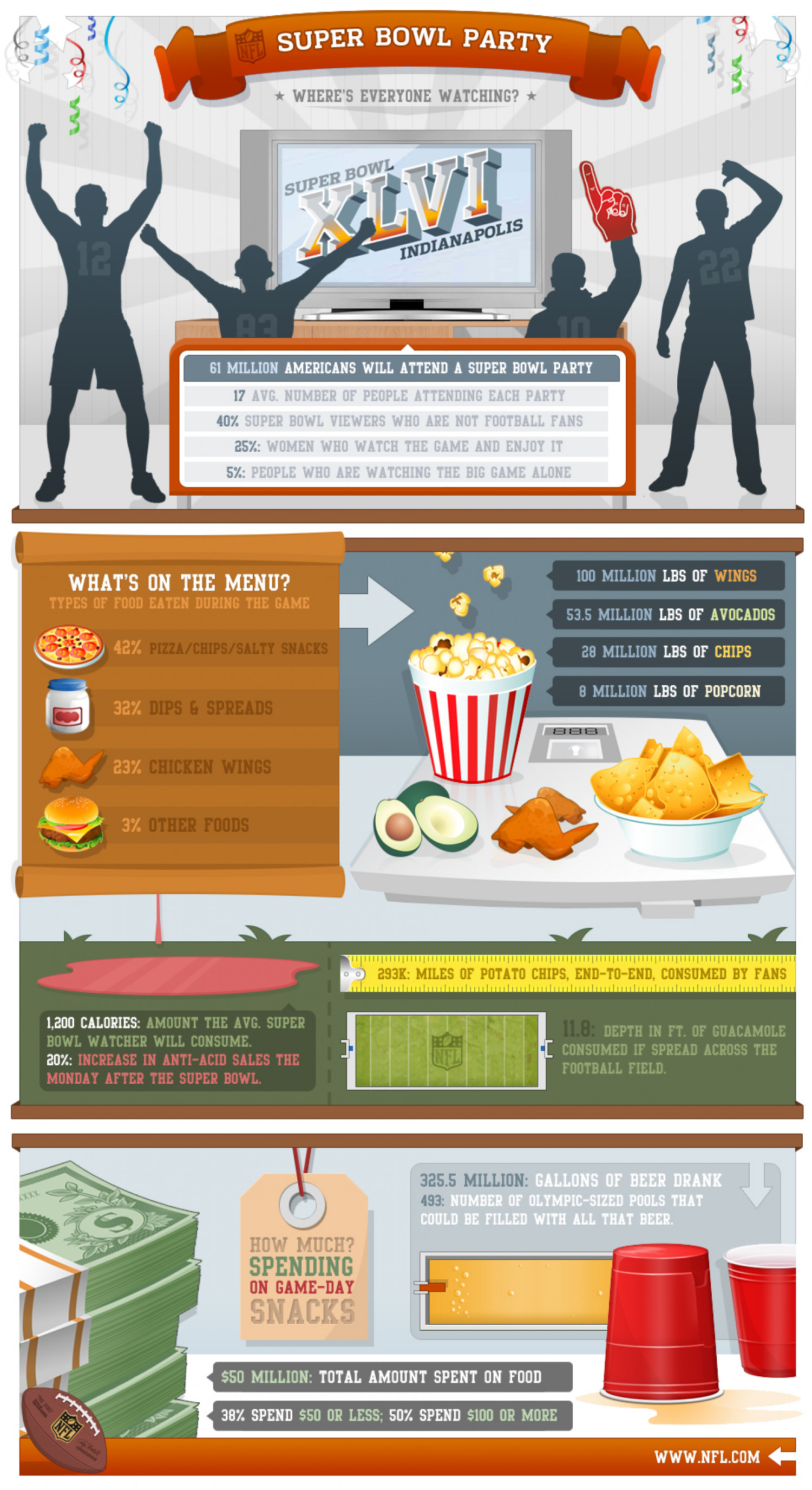 NFL - Super Bowl Party Infographic