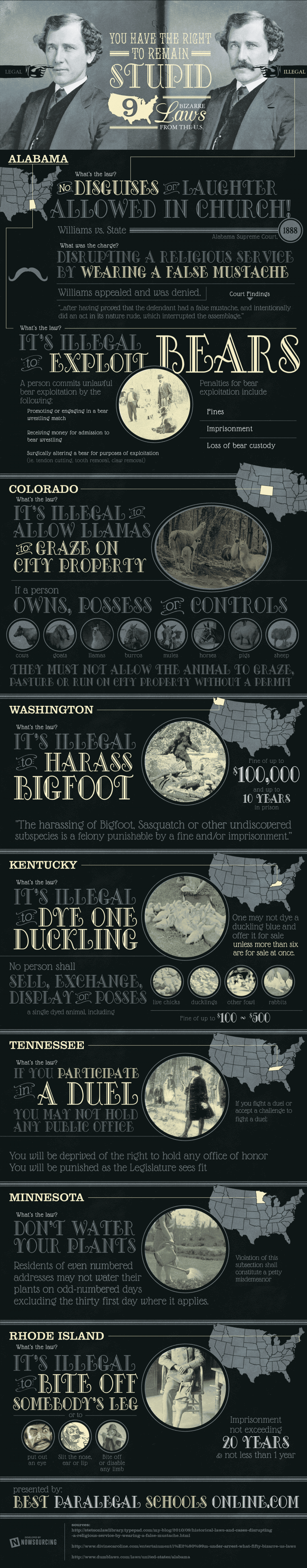 Nine Bizarre Laws from the US Infographic