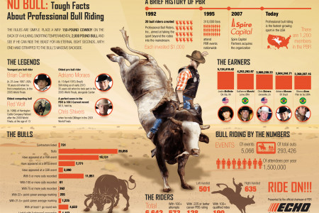 No Bull Infographic