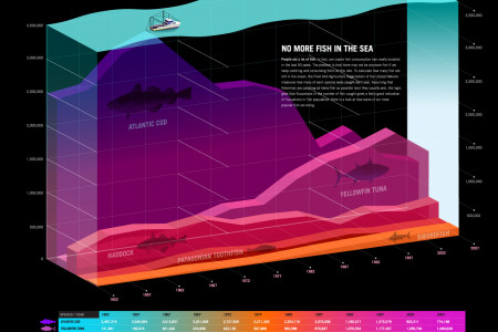 No more Fish in the Sea Infographic