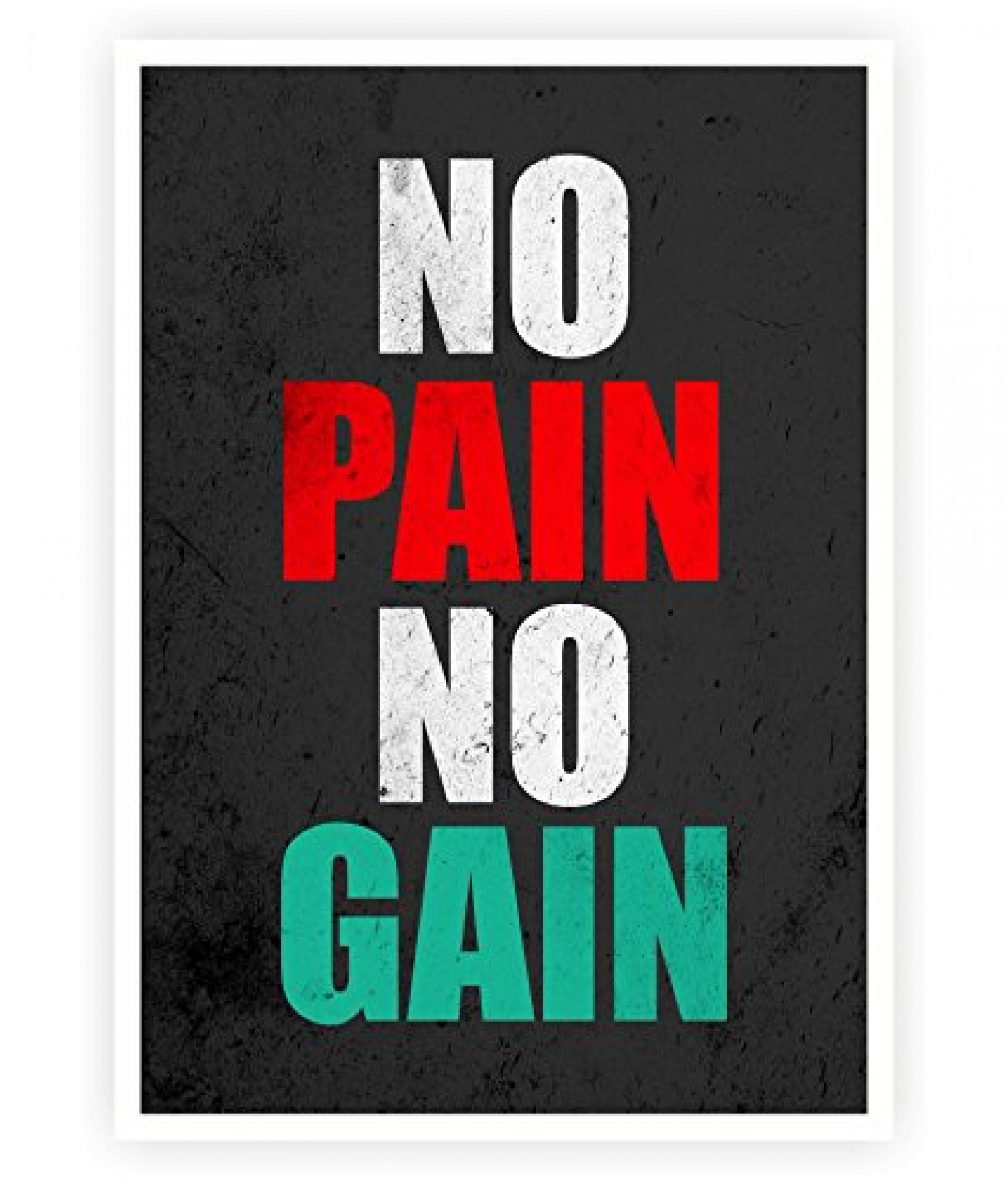 No Pain No Gain Gym Quotes Poster