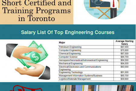 North York College Of Information And Technology Infographic