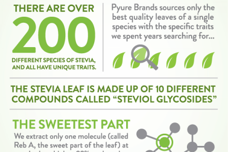 Not All Stevia Is Equal Infographic