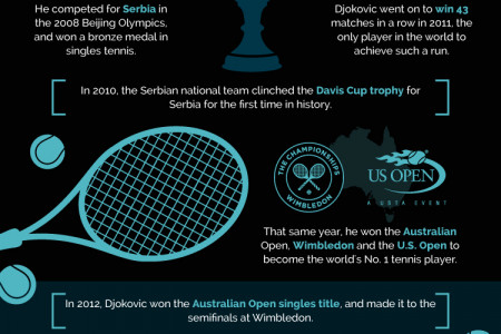 Novak Djokovic | Story of a Champion Infographic