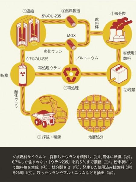 Nuclear Cycle Infographic