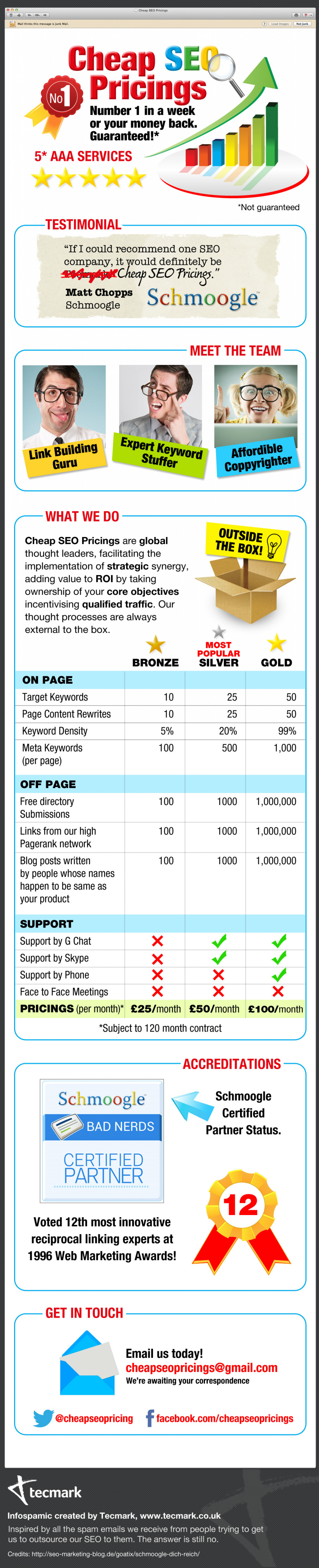 Number 1 in a week or your money back - an SEO Infospamic Infographic
