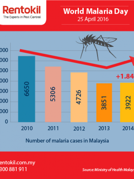 Number of Malaria cases in Malaysia  Infographic