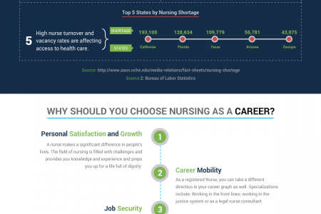 Nursing Careers are Smart Moves Infographic