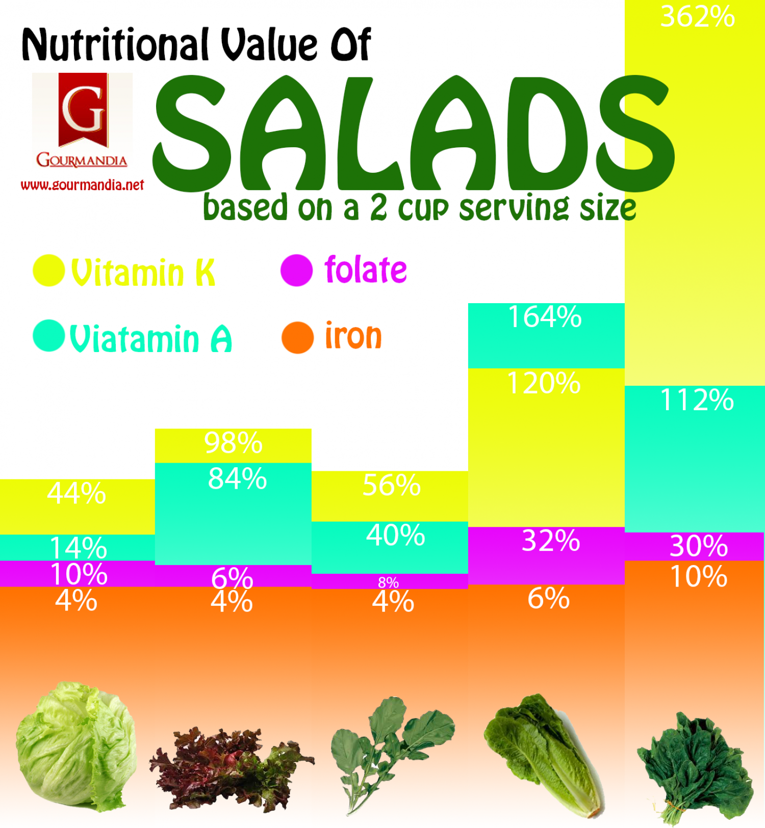 Nutritional Value Of Salads Infographic