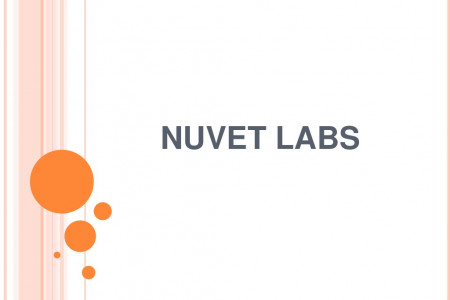 NuVet Labs: Facts about Bengal Cats Infographic