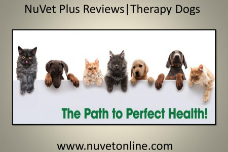 NuVet Plus Reviews   Therapy Dogs Infographic