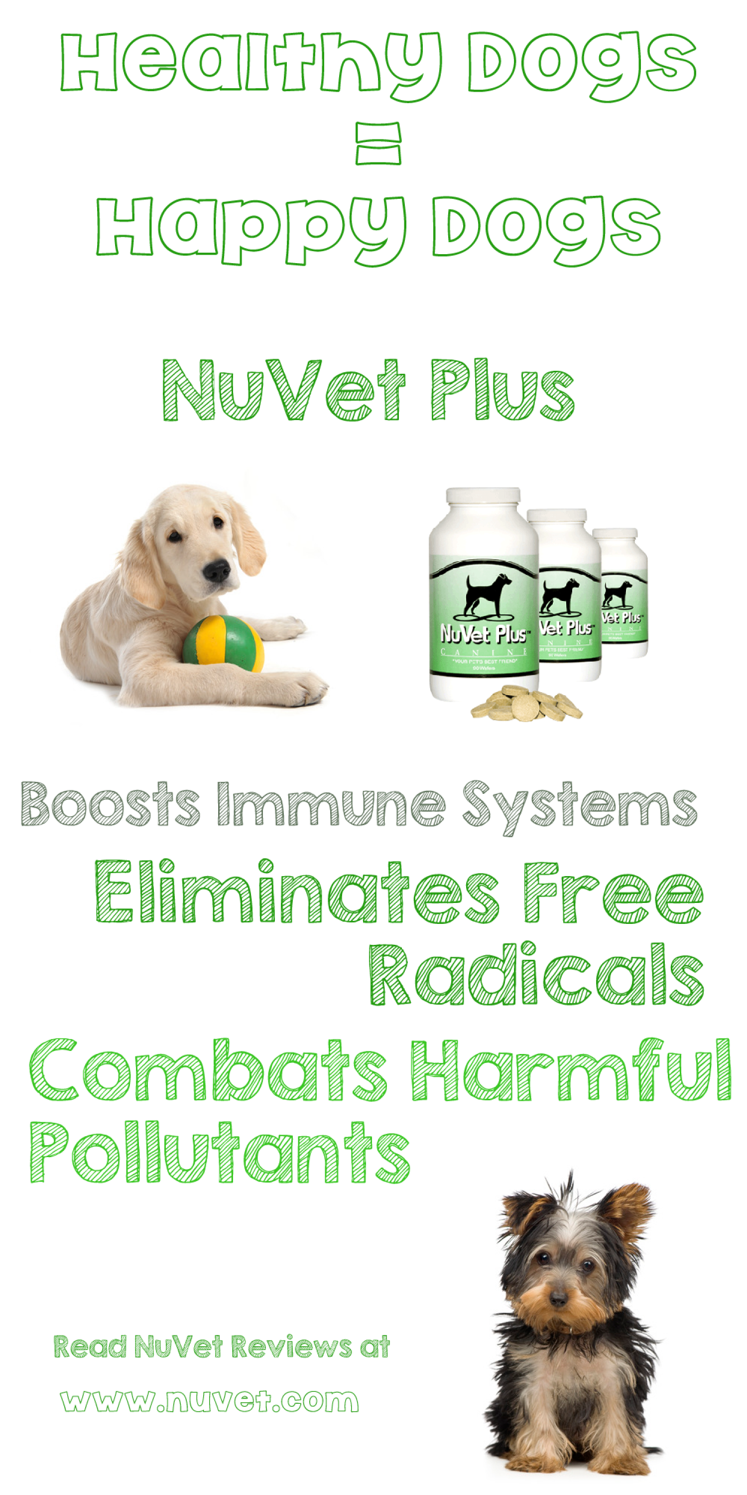 NuVet Supplement = Healthy Dog = Happy Dog Infographic