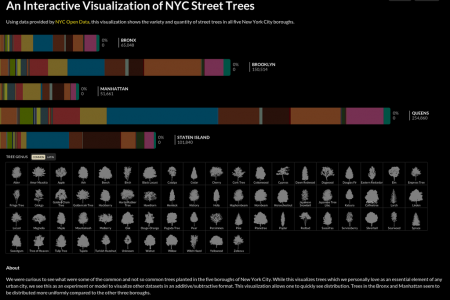 NYC Street Trees Infographic