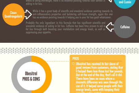 Obesitrol Review – Find Out If It Can Work For You Infographic