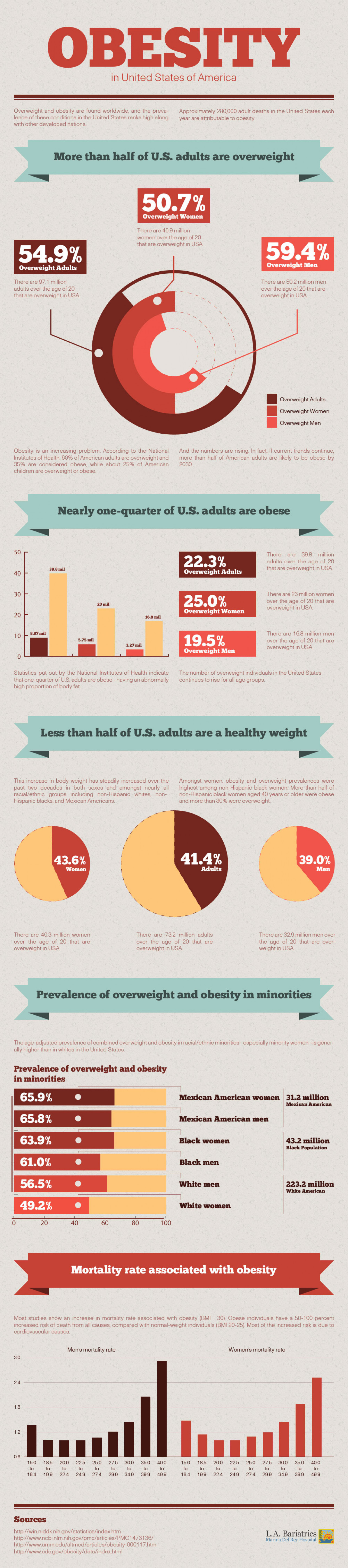 Obesity In the United States Infographic