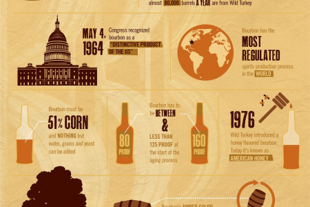 On the Topic of Bourbon Infographic