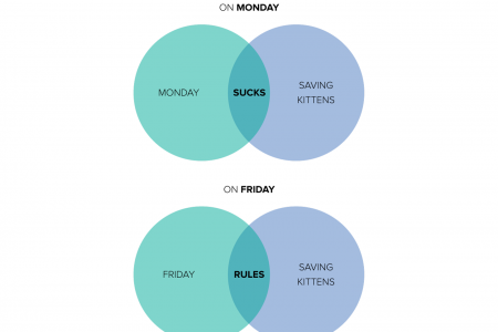 On Which Day of the Week are People More Likely to Save a Kitten Infographic
