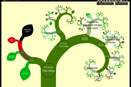 OneZoom Tree of Life Infographic