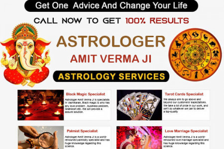 Online Astrology Advice By The Best Astrologer Infographic
