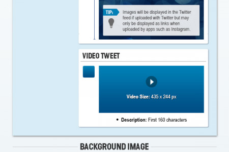 Online Circle Digital | Twitter Sizes and Dimensions Cheat Sheet 2013  Infographic