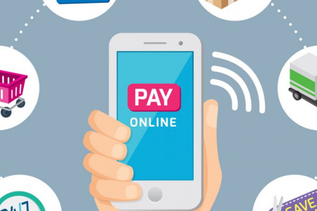 Online Payment Service Providers Infographic
