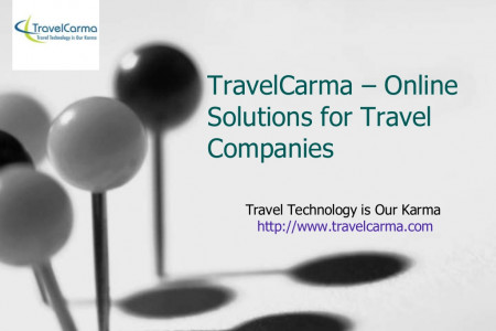 Online Solutions for Travel Companies Infographic