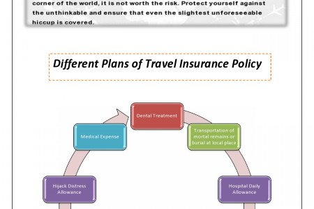 Online Travel Insurance Infographic