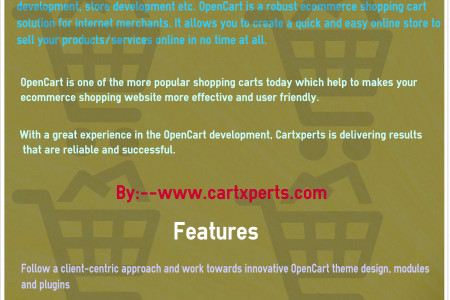 Opencart Developer in Chandigarh Infographic