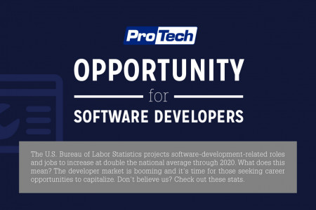 Opportunity for Software Developers Infographic