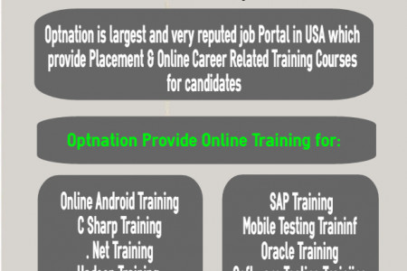 OPT Jobs & Training in USA Infographic