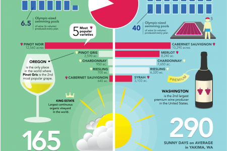 Oregon vs. Washington Wines Infographic