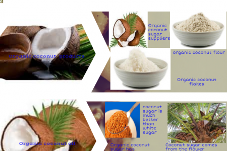 Organic coconut product suppliers Infographic
