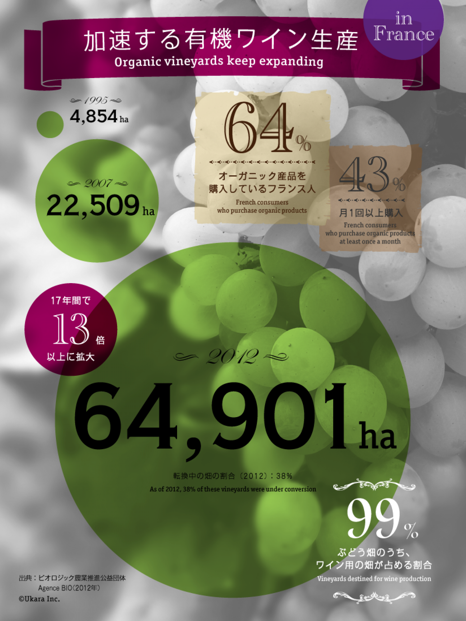 Organic vineyard keep expanding in France Infographic