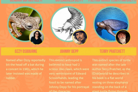 Organisms Named After Celebrities Infographic