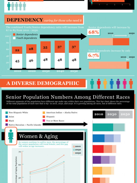 Our Aging Population Infographic
